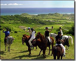 Ride Barbados Horseback Tours