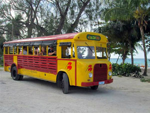 Bajan Vintage Open Bus Tours