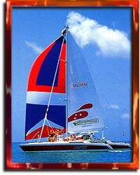 Stiletto Catamaran Cruises