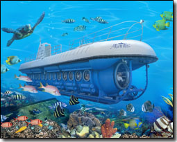 Atlantis Submarines Tours