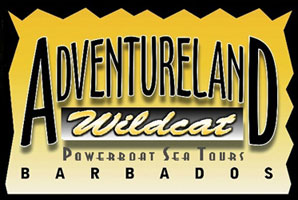 Wildcat Powerboat Sea Adventures